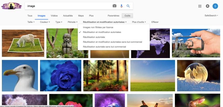 image libre de droit google image